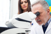 Researchers at work — Stock Photo