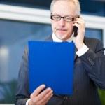Businessman analyzing financial documents — Stock Photo #46590295