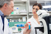 People at work in a laboratory — Stock Photo