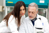 Couple of scientist in a laboratory — Stock Photo