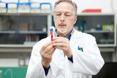 человек в химической лаборатории — Стоковое фото