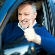 Man in his new car — Stock Photo #48100135