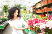 Woman looking at flowers in greenhouse — Stock Photo
