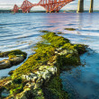 Stock Photo: Forth Road Bridge and seaweed