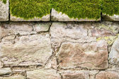 Closeup old medieval mossy wall — Stock Photo