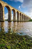 古い石造りの鉄道橋 nad 海藻 — ストック写真