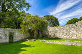 Medieval wall in a park in Scotland — Stock Photo