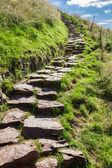 Camino de piedra en las montañas que conducen a la cima — Foto de Stock