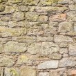 Old ancient wall in Scotland — Stock Photo