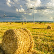 Stock Photo: Windmills generating green energy