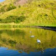 Beautiful view of the mountains and a lake in Scotland — Stock Photo #13623064