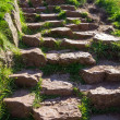 Stone path in the mountains in summer — Stock Photo #13623880