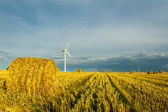 Windmills at harvest time — Stock Photo
