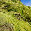 View of green Arthur's Seat in Edinburgh, Scotland — Stock Photo
