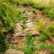 Stone footpath in the mountains in summer — Stock Photo
