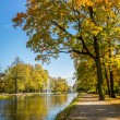 Sunny day in autumn near park and river — Stock Photo