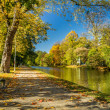 Bench in autumn park on a sunny day — Stock Photo