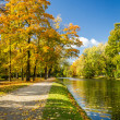 Yellow leaves in autumn park on the river — Stock Photo #13821173