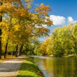River in autumn park on a sunny day — Foto de Stock