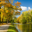 River in autumn park on a sunny day — Stockfoto