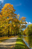 Reflection on the river in autumn park — Stock Photo