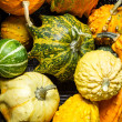 Stock Photo: Wicker basket full of colorful pumpkins