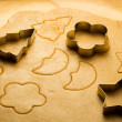 Close-up of gingerbread cookies cut — Stock Photo