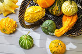 Colorful pumpkins harvested in a wicker basket — Stock Photo