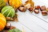 Autumn harvest on the wooden floor — Stock Photo