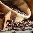Closeup of a drawer full of ground coffee in the grinder — Stock Photo