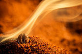 Closeup one burned coffee beans — 图库照片