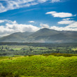 Beautiful views of the Scottish highlands — Stock Photo #17120803