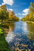 Yellow leaves in the autumn park and river — Stock Photo