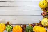 Autumn background with pumpkin and leaves — Stock Photo