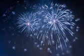 Fireworks during the celebrations event at night — Stock Photo