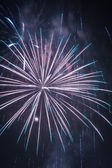 Fireworks during the new year celebrations — Stock Photo