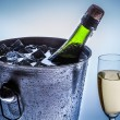 Closeup of cold chilled champagne — Stock Photo