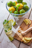 Crushed sugar and citrus fruits for cold drink — Stock Photo