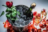 Closeup červené růže a šampaňské — Stock fotografie
