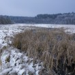 Frozen swamp covered with snow in the winter - Stock Photo