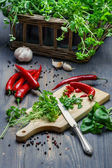 Preparing for dishes made of fresh spices and herbs — Stock Photo