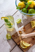 Fresh citrus fruits for cold drink — Stock Photo