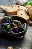 Closeup of Mussels served with bread — Stock Photo