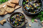 Mussels served with bread in a country way — Stock Photo