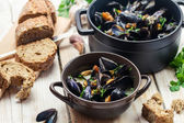 Mussels as a dinner by the sea — Stock Photo