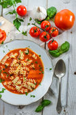 Plate of tomato soup made and fresh vegetables — Stock Photo
