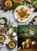 Flavors straight from the forest — Stock Photo