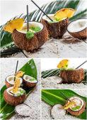 Pinacolada beber em casca de coco — Foto Stock
