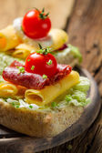 Closeup of sandwich with salami, tomato, chive and lettuce — Stock Photo