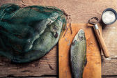 Preparing fish for dinner in the countryside — Foto Stock